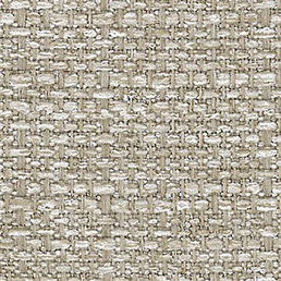 Clusia coul. beige scuro
